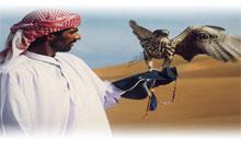 CONTRASTES DE DUBAI
