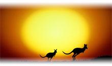 Circuito AUSTRÁLIA: ADELAIDA COM KANGAROO ISLAND