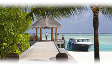 Circuito MALDIVAS: HOTEL ANANTARA DHIGU (Sunset Pool Villa) (PC)