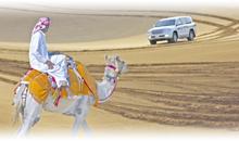 Circuito OFERTA LO MEJOR DE DUBAI (Movenpick Jumeirah Beach)