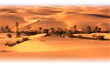 marruecos: la puerta del desierto