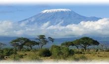 Agencia de viajes para África en Colombia