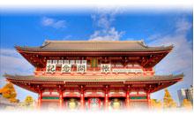 DESCUBRIENDO JAPON (Oferta)