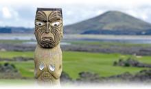 oferta nueva zelanda tradicional y fiji