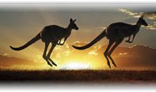 ESENCIAS DE AUSTRALIA