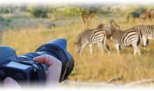 recuerdos de sudáfrica