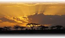 pinceladas de kenia, tanzania con zanzibar