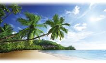 SEYCHELLES (Double Tree by Hilton Allamanda - King Deluxe Ocean View)