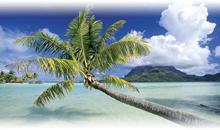 tahiti - bora bora (overwater bungalow en bora bora)