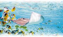 TAHITI - MOOREA - BORA BORA (Superior Overwater Bungalow en Moorea) (MP)