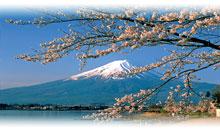 gran japon (hiroshima y miyayima) (aeromexico)