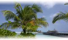 Agencia de viajes para Maldivas en Ciudad de México